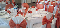 Elegent chair cover design